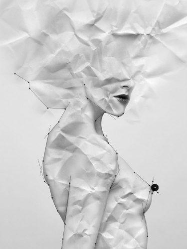 Paper bird 2 - Jérémy Clausse - Clausse Jérémy Photography